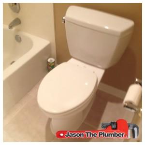 Clogged Toilet Repair Maricopa AZ